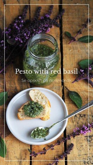 Pesto with red basil Se opskrift på norsmor.dk