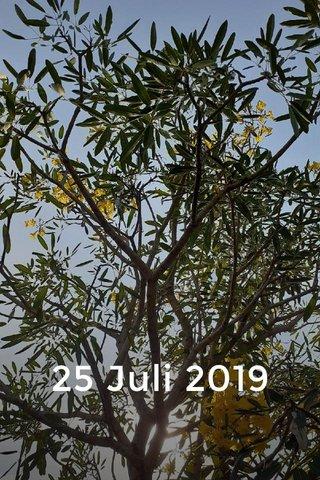 25 Juli 2019