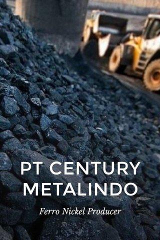 PT CENTURY METALINDO Ferro Nickel Producer