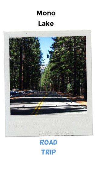Mono Lake Road Trip