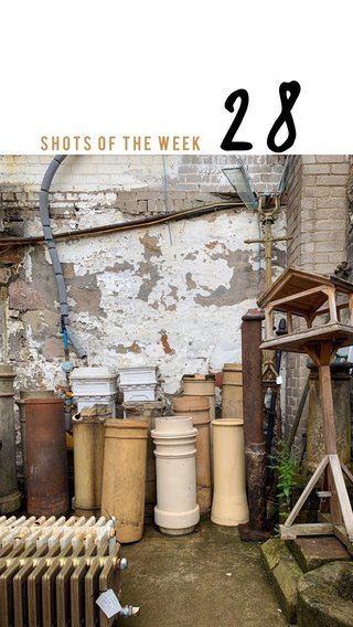 28 Shots of the week