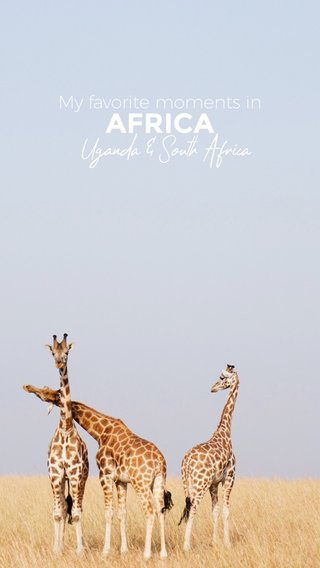 AFRICA Uganda & South Africa My favorite moments in