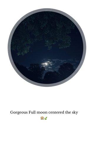 Gorgeous Full moon centered the sky 🙈🍃
