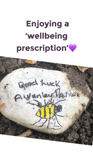 Enjoying a 'wellbeing prescription'💜 A SHORT SUBTITLE