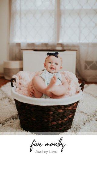 five months Audrey Lane