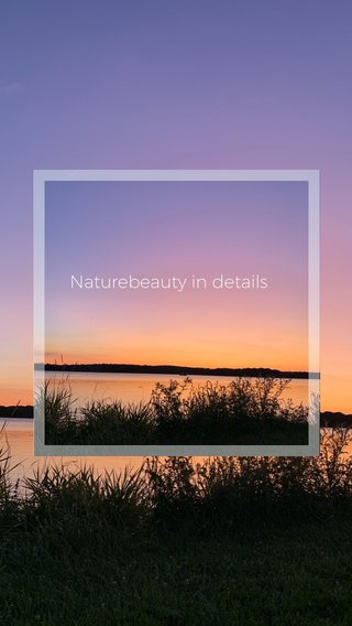 Naturebeauty in details