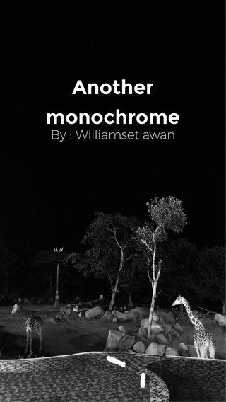 Another monochrome By : Williamsetiawan
