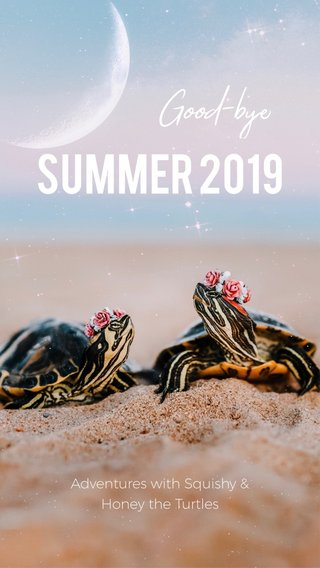 Summer 2019 Good-bye Adventures with Squishy & Honey the Turtles