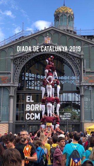 Diada de Catalunya 2019