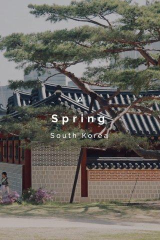 Spring South Korea