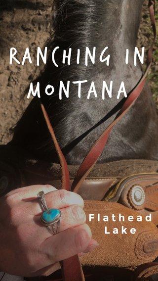 Ranching in Montana Flathead Lake