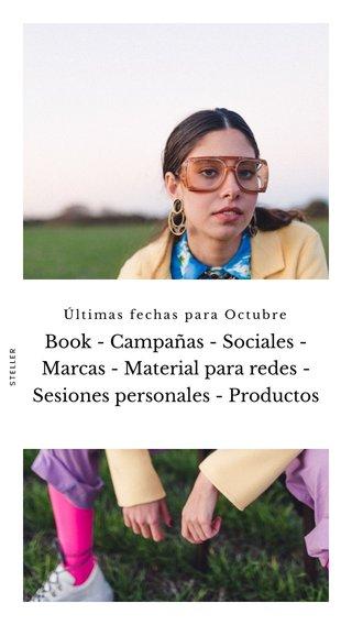 Book - Campañas - Sociales - Marcas - Material para redes - Sesiones personales - Productos Últimas fechas para Octubre