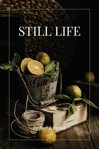 STILL LIFE by puji hamzah