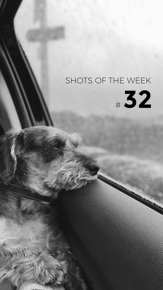 32 # SHOTS OF THE WEEK week