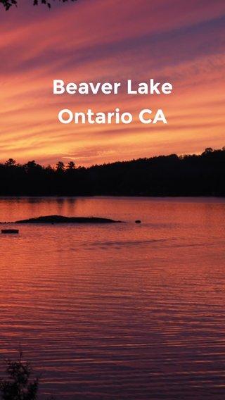 Beaver Lake Ontario CA