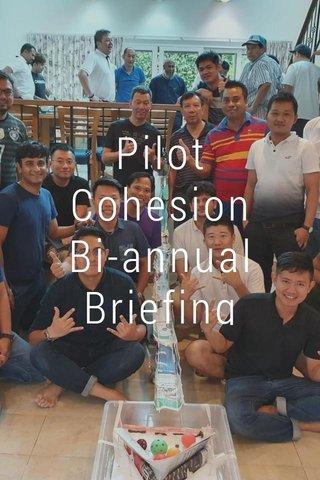Pilot Cohesion Bi-annual Briefing