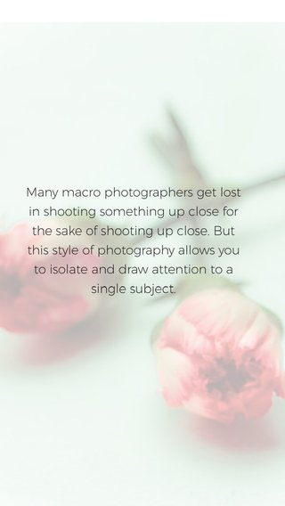 Many macro photographers get lost in shooting something up close for the sake of shooting up close. But this style of photography allows you to isolate and draw attention to a single subject.