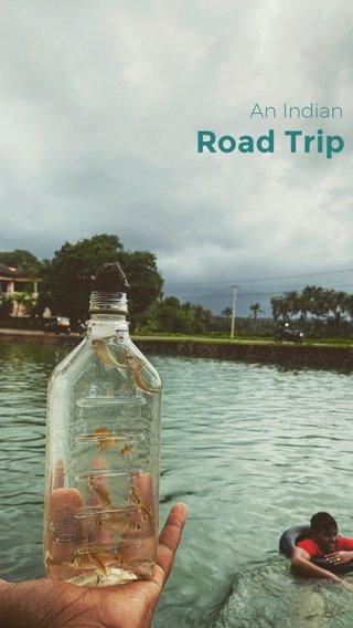 Road Trip An Indian