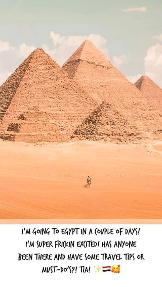 I'm going to Egypt in a couple of days! I'm SUPER FRICKIN excited! Has anyone been there and have some travel tips or must-do's?! TIA! ✨🇪🇬🥰