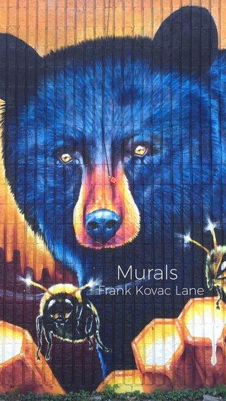 Murals Frank Kovac Lane