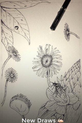 New Draws ✍🏻