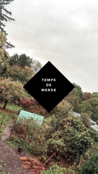 TEMPS DE MERDE