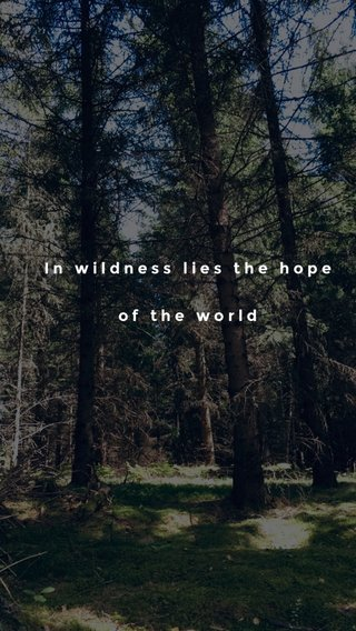 In wildness lies the hope of the world