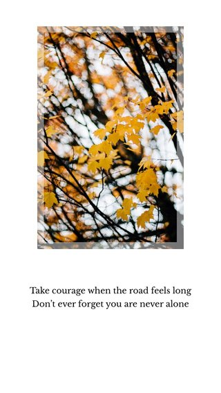 Take courage when the road feels long Don't ever forget you are never alone