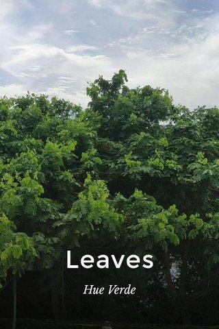 Leaves Hue Verde