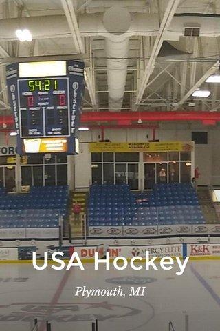 USA Hockey Plymouth, MI