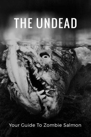 THE UNDEAD Your Guide To Zombie Salmon