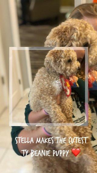 Stella makes the cutest TY Beanie Puppy ❤️