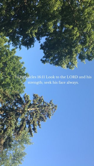 1 Chronicles 16:11 Look to the LORD and his strength; seek his face always.