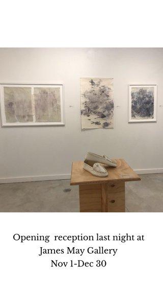 Opening reception last night at James May Gallery Nov 1-Dec 30