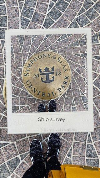 Ship survey