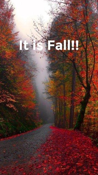 It is Fall!!