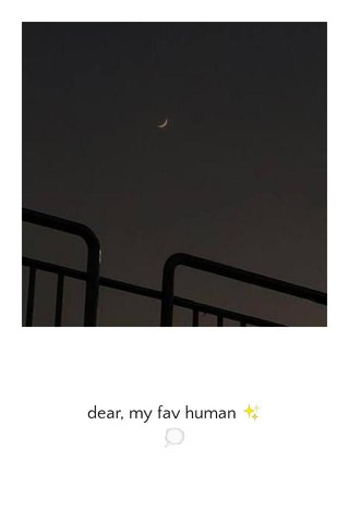 dear, my fav human ✨ 💭