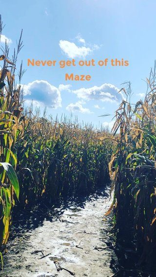 Never get out of this Maze