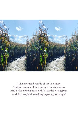 """""""The overhead view is of me in a maze And you see what I'm hunting a few steps away And I take a wrong turn and I'm on the wrong path And the people all watching enjoy a good laugh"""""""