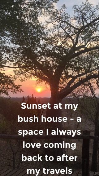 Sunset at my bush house - a space I always love coming back to after my travels