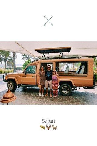 Safari 🐆🦌🐐