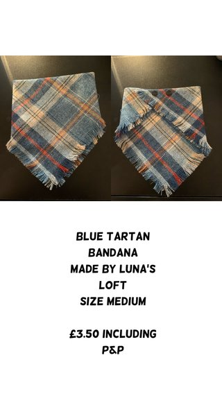 Blue tartan bandana Made by Luna's loft Size medium £3.50 including p&p