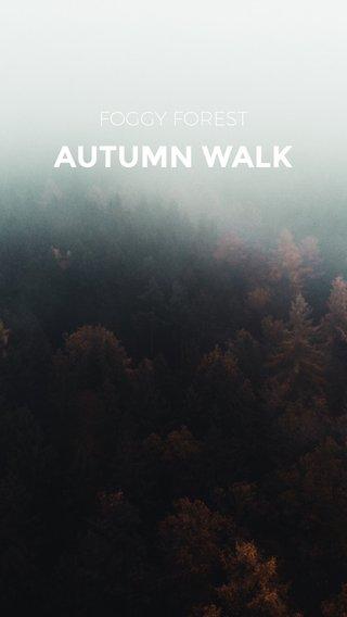 AUTUMN WALK FOGGY FOREST