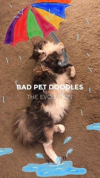 BAD PET DOODLES THE EVOLUTION