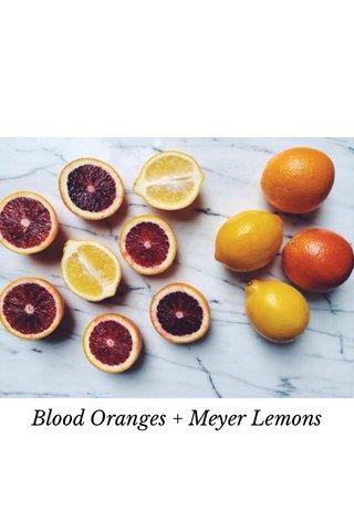 Blood Oranges + Meyer Lemons