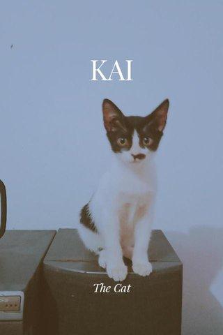 KAI The Cat