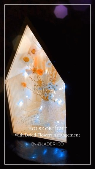 By @LADERI.CO HOUSE OF LIGHT with Dried Flowers Arrangement