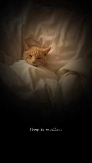 Sleep is excellent