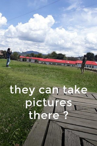 they can take pictures there ?
