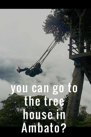 you can go to the tree house in Ambato?